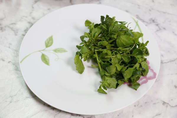 watercress-on-the-plate