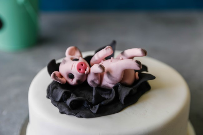 How to make fondant pig figure
