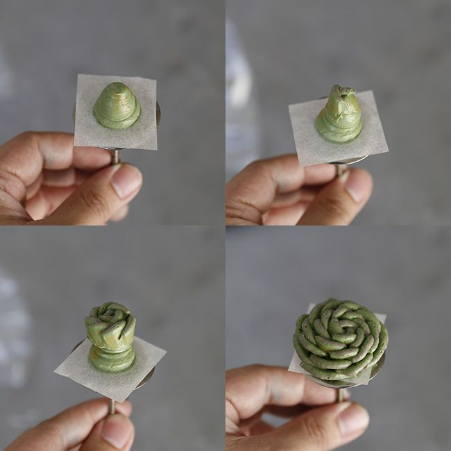 how-to-pipe-rounded-succulent